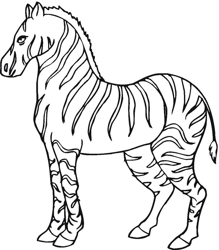simple zebra template