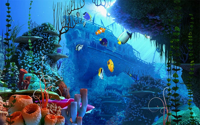 stunning aquarium background