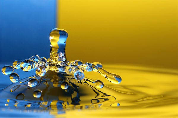 stunning water drop photography