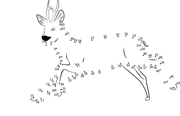 sweet deer connecting dots
