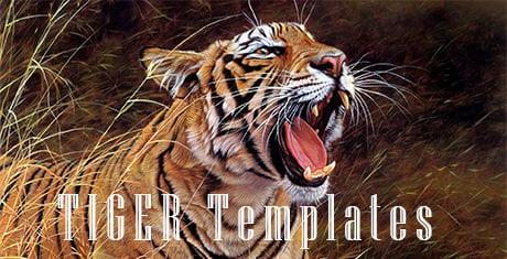 tigertemplates