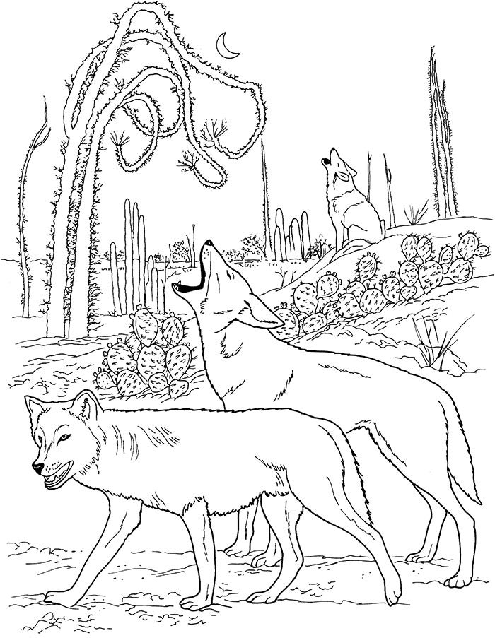 two wolves coloring page