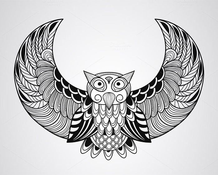 vector owl artwork