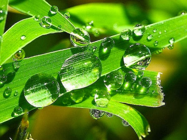 water drop photography example