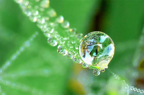 water droplet photography 3