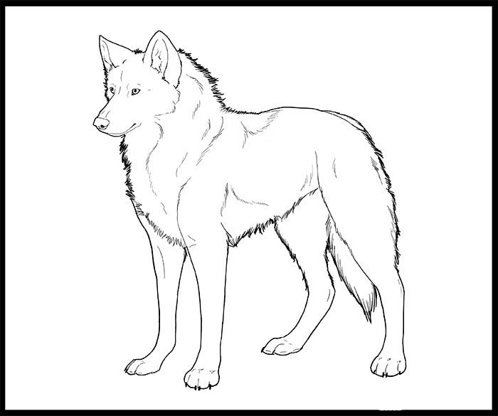 wolf coloring page for kids