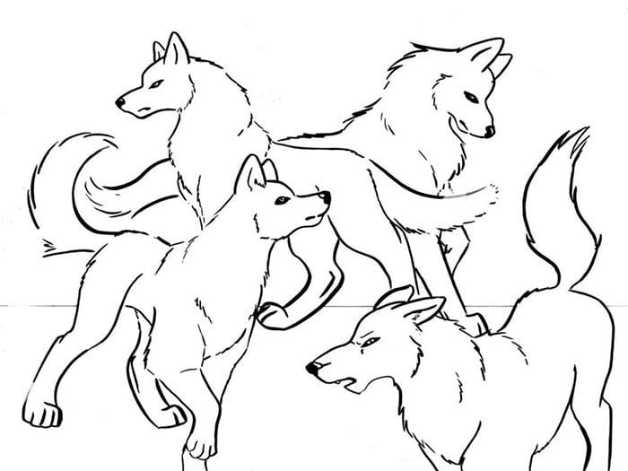 wolves templat