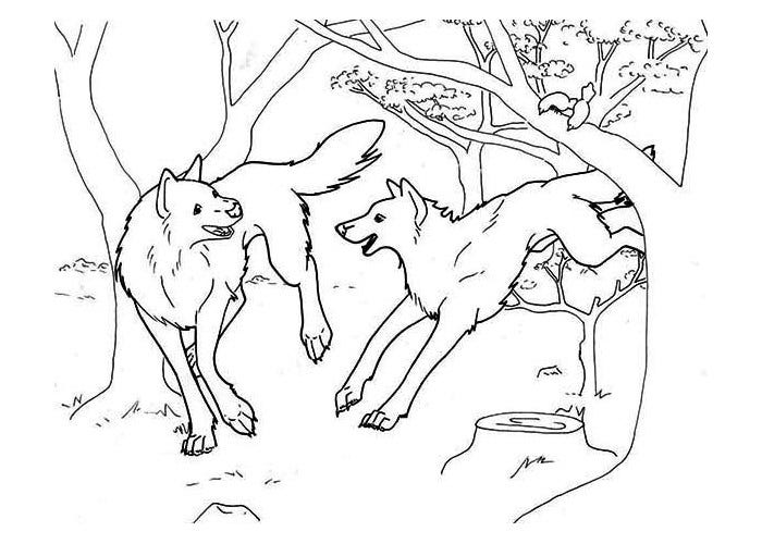 wolves in the forest template