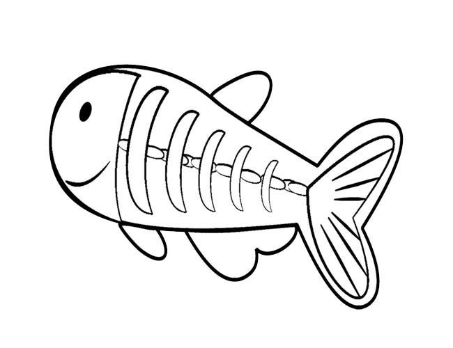 x ray fish template
