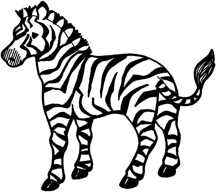 40 zebra templates free psd vector eps png format Coloring book zebra