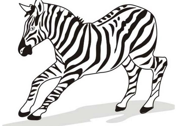 zebra running like a bolt coloring page
