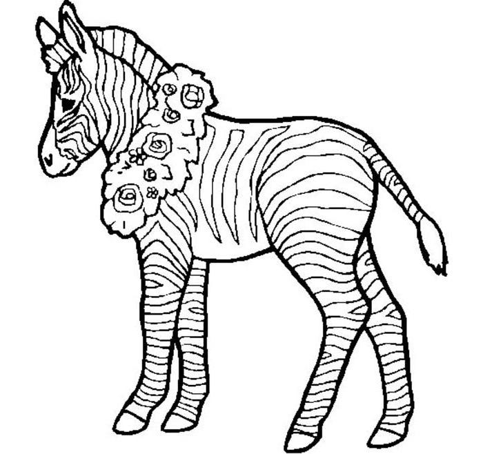 zebra with flower coloring page