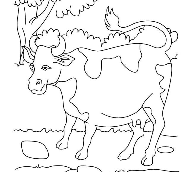cow template 16