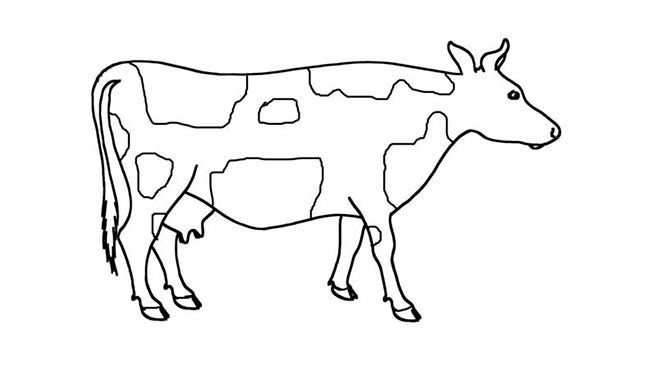 photograph about Printable Cow Pattern named Cow Template - Animal Templates Cost-free Top quality Templates
