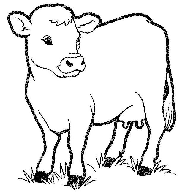 image relating to Printable Cow Pattern known as Cow Template - Animal Templates Cost-free Quality Templates