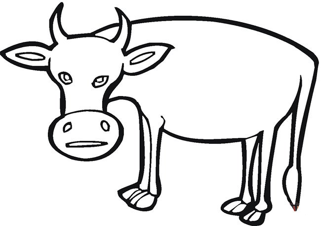 cow template 23