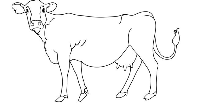 Cow Shape Templates on Shapes Coloring Pages For Kids