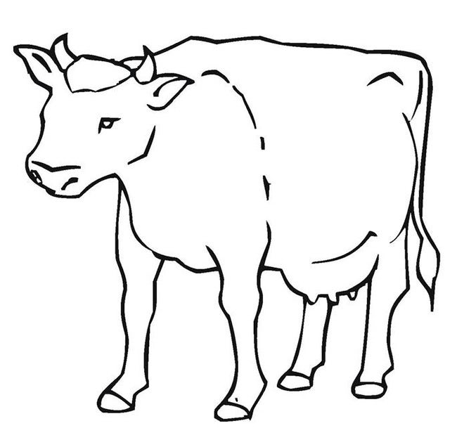 graphic about Cow Printable named Cow Template - Animal Templates Totally free Quality Templates
