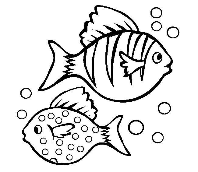 download - Printable Fish Pictures