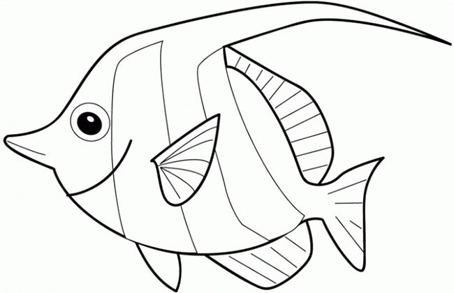 image relating to Fish Cutouts Printable titled 39+ Fish Templates Free of charge Top quality Templates