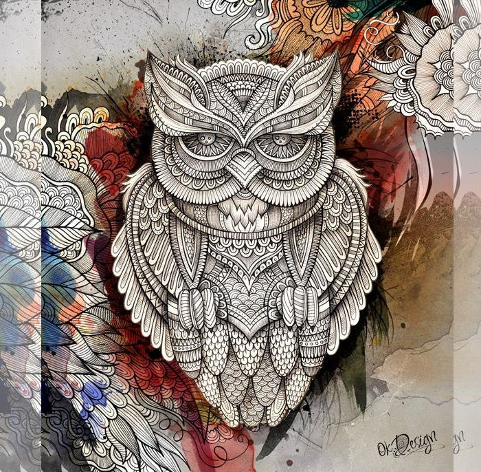 owl artwork2