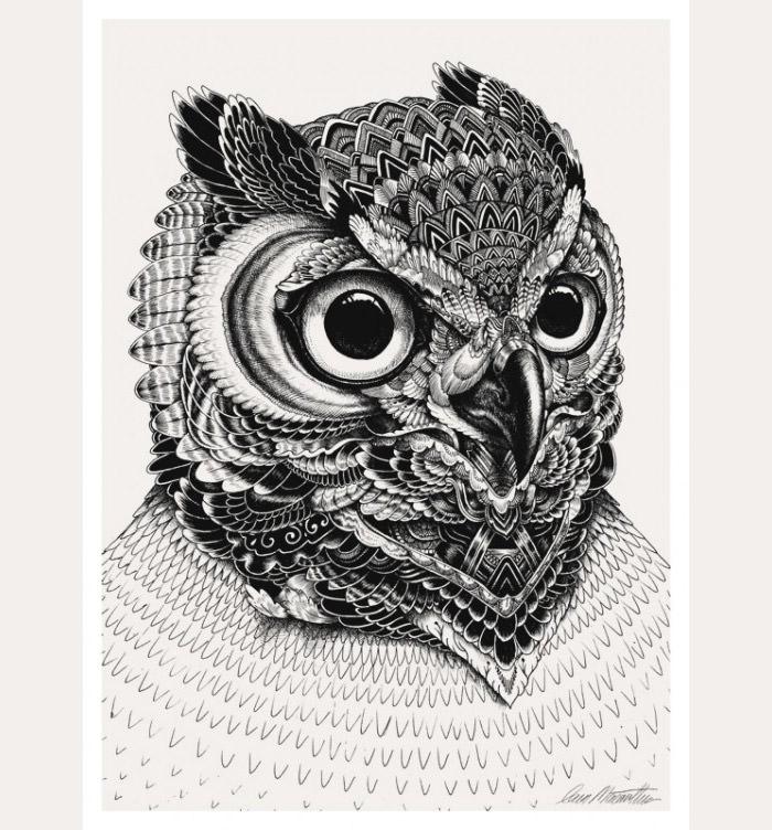 owl artwork3