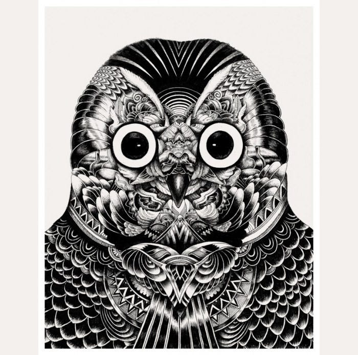 owl artwork4