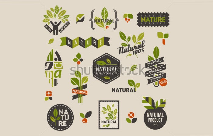 stock vector nature themed labels and badges with green leaves set of vector design elements 131168099