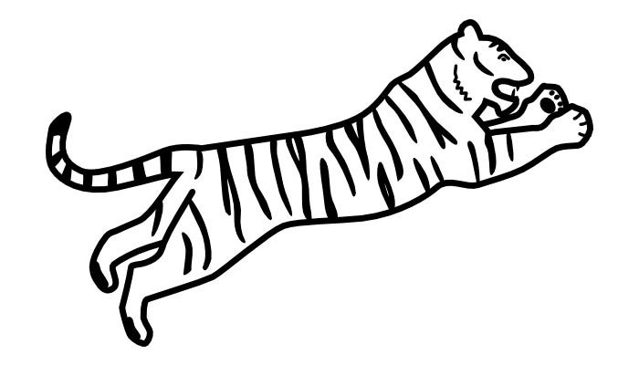 tiger template 3