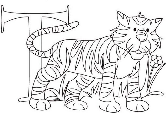tiger template 35