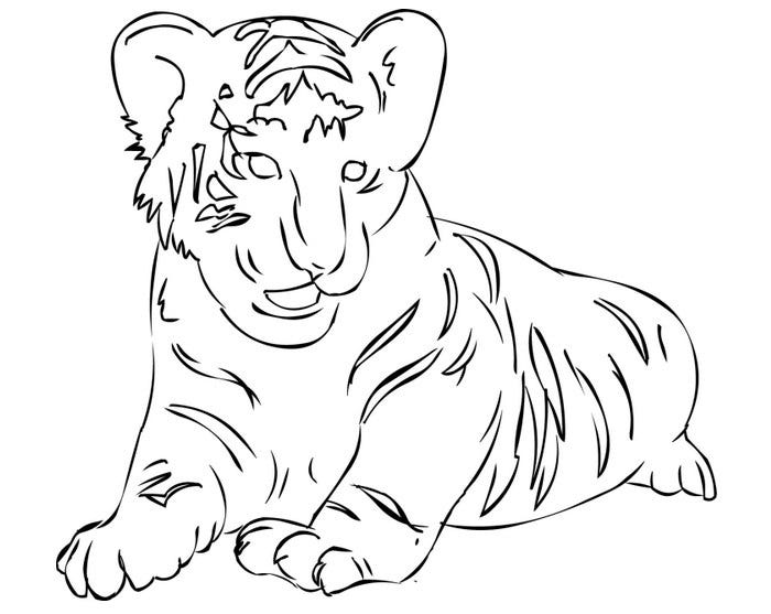 tiger template 52