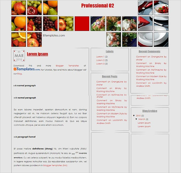 professional blogger template