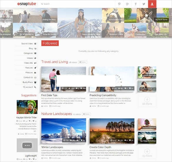 premium video youtube wordpress theme