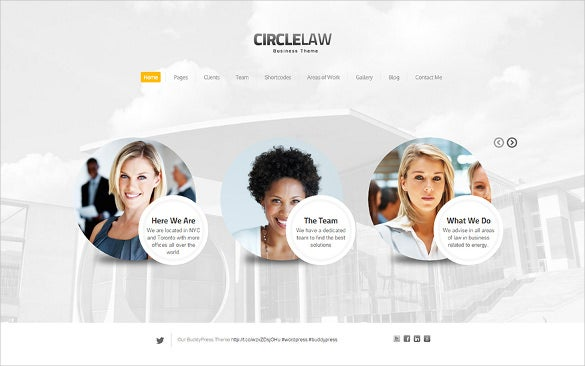 clean responsive wordpress theme for legal adviser