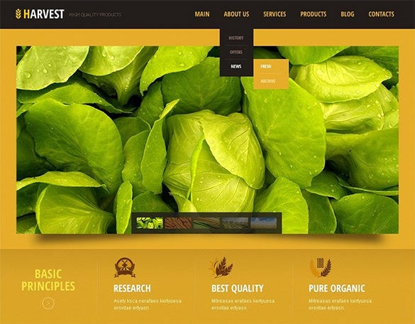 best agribusiness wordpress theme