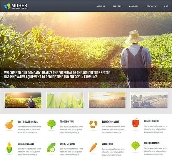 cms templates wordpress templates 100 premium responsive