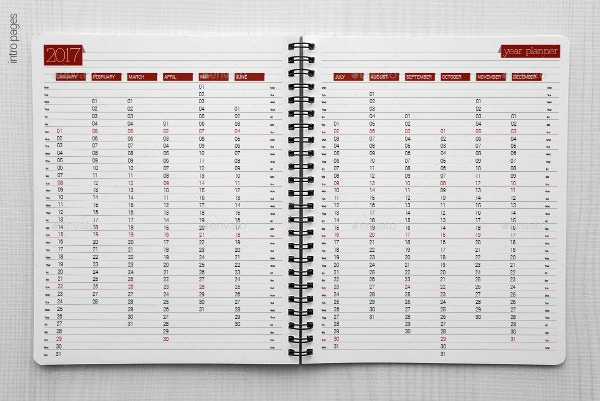 Calendar Planner Organizer : Best daily calendar templates designs for