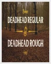 Deadhead Script Typeface