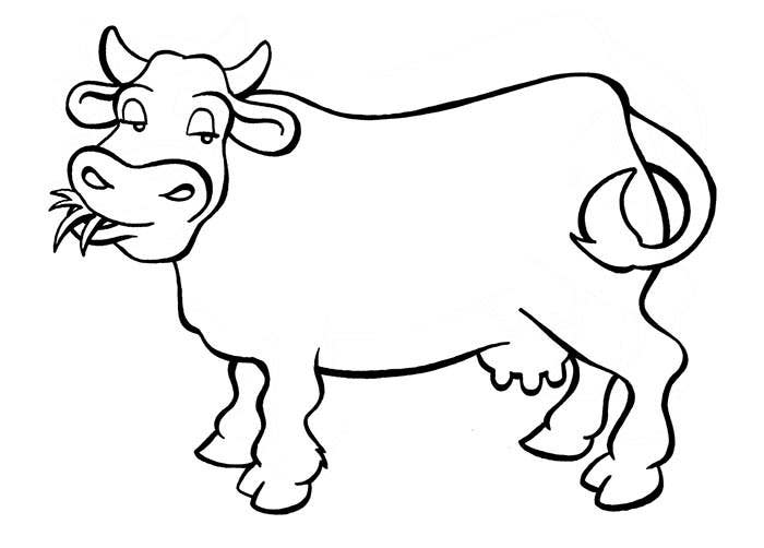 Line Drawing Cow : Animal colouring pages free download print