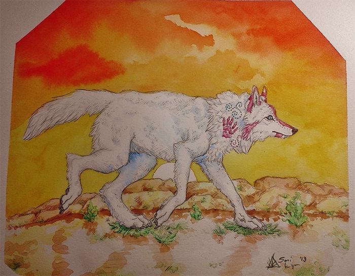 aboriginal wolf