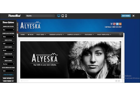 alyeska responsive wordpress theme