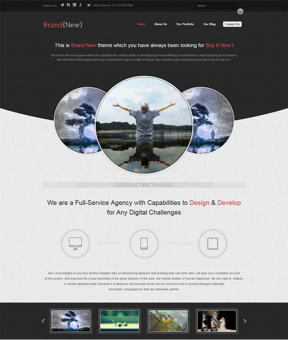 An Exclusive WordPress Theme