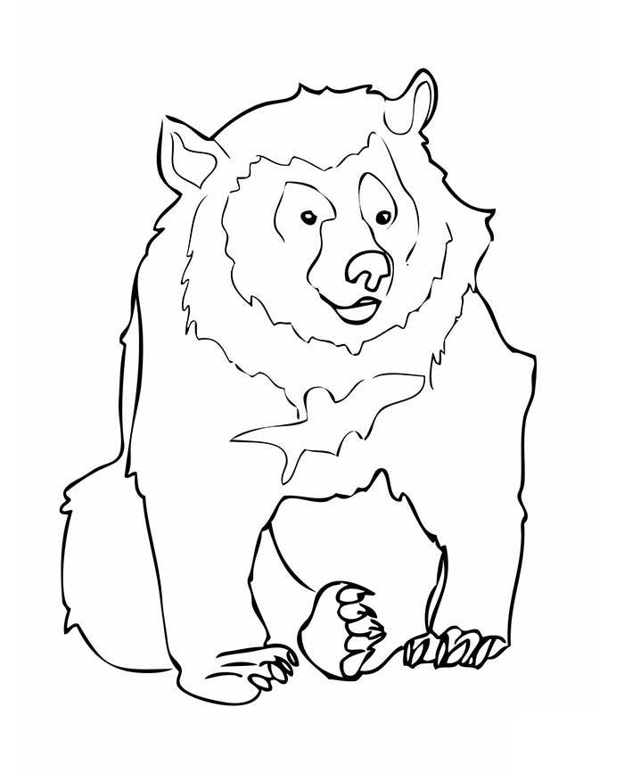 bear template outline