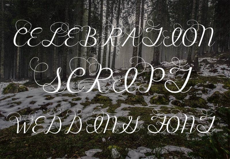 celebration script wedding font