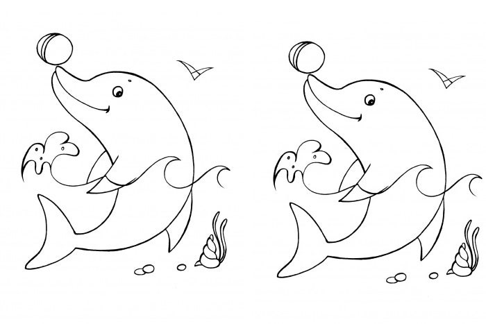 cute dolphin coloring page - Cute Dolphin Coloring Pages
