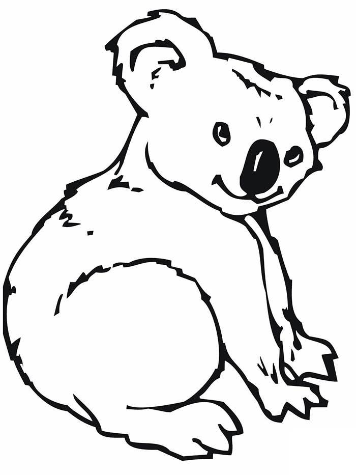 cute kolala bear coloring page