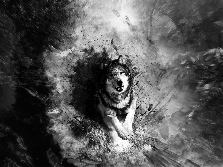dog bw painting on abstract beautiful background