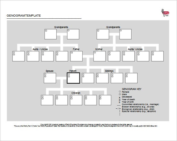 free genogram template word document download