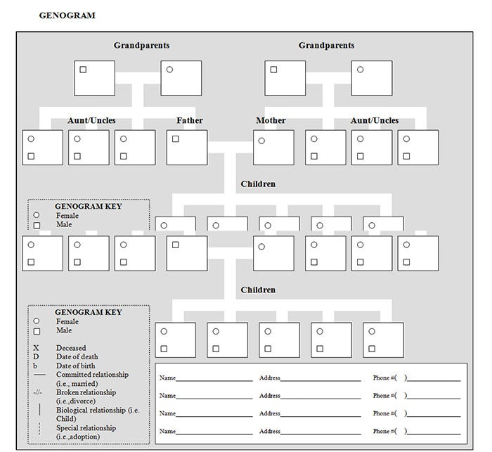 Printables Genogram Worksheet 31 genogram templates free word pdf psd documents download template builder generator