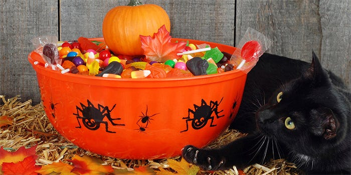 halloween candy photography